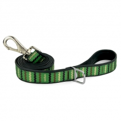 Empire BMX dog leash
