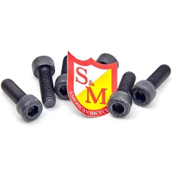 S&M stem bolts