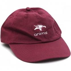 Animal Icon hat