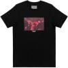 Empire BMX T - Roses